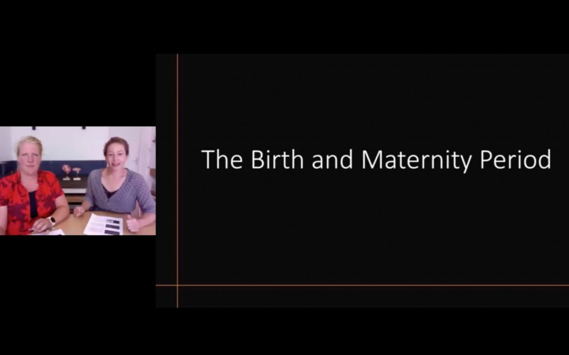 The Birth and Maternity Period
